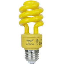 colored fluorescent light bulbs colored cfl bulbs bulbamerica