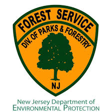 New Jersey Forest images New jersey forests home facebook