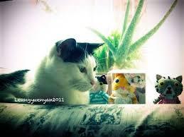 vente aux ench鑽es mobilier de bureau les 11 meilleures images du tableau cat toys sur html
