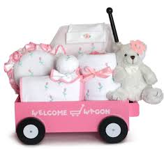baby gift pretty in pink welcome wagon