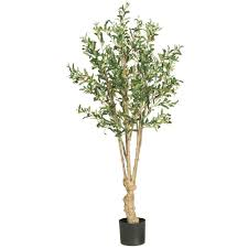 nearly 5 ft olive silk tree 5258 the home depot