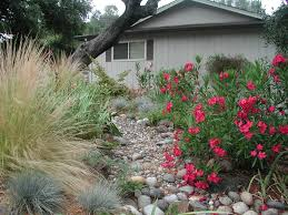 dry river beds u2013 beautiful u0026 beneficial gardening tips for the