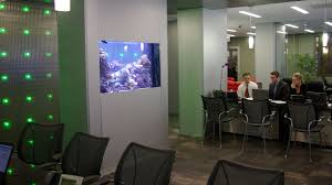 Aquarium Room Divider Chicago Custom Aquariums U0026 Fish Tank Company