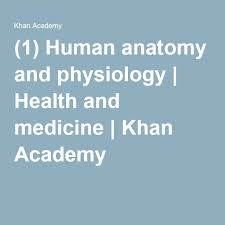 What Is Human Anatomy And Physiology 1 Best 25 Anatomy And Physiology Courses Ideas On Pinterest Human