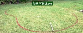 Diy Backyard Putting Green by Putting Green Installation Information Build A Putting Green