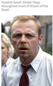Shaun Of The Dead Meme - 33 current mood memes that have almost consulted you personally