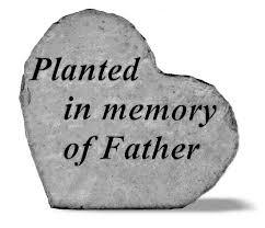 in memory of berry planted in memory of garden rock in garden