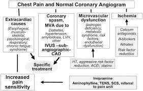 pathophysiology and management of patients with chest pain and