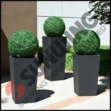 outdoor boxwood topiary spheres garden decorative buy