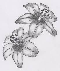 White Lily Flower The 25 Best Lily Tattoo Design Ideas On Pinterest Lillies
