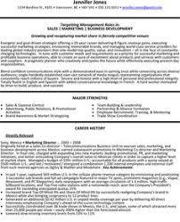 Sle Resume Business Development Director resume director sales director lewesmr