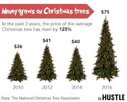 christmas tree prices are out of