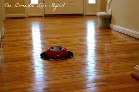 pergo flooring cleaning steam meze pertaining to best steam