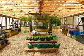 buy local grow local independent we stand independent we stand rid all green partnership u2014 growing food jobs u0026 green neighborhoods