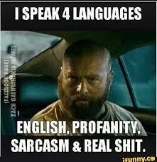 Wtf Is This Shit Meme - i speak 4 languages english profanity sarcasm real shit gangster