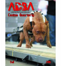 american pitbull terrier dog price products archive american dog breeders association