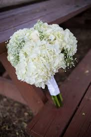 baby s breath bouquet diy white hydrangea and baby s breath bouquet