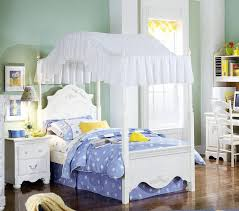 Frozen Canopy Bed Cool Toddler Canopy Bed With Decoration In Toddler Canopy Bed With