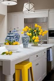 Gray And Yellow Kitchen Ideas Hervorragend Yellow And Gray Kitchen Accessories Kitchens With