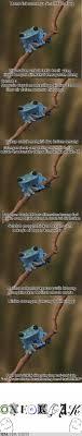 Fact Frog Meme - meme yang jarang digunakan small fact frog 1cak for fun only