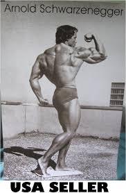 amazon com arnold schwarzenegger 70s bodybuilding flexing bicep