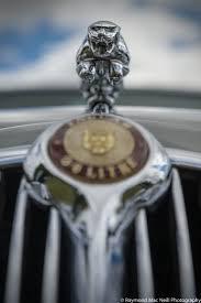 290 best jag images on jaguar cars car and automobile