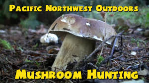edible native plants pacific northwest mushroom hunting pacific northwest outdoors youtube