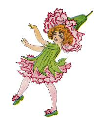 vintage flower fairy image pink carnation the graphics fairy