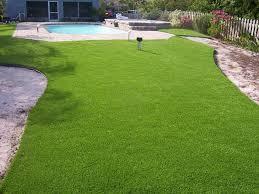 Turf For Backyard by Triyae Com U003d Turf Vs Grass Backyard Various Design Inspiration