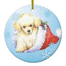 poodle ornaments keepsake ornaments zazzle