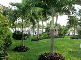 Tropical Landscaping Ideas Awesome Tropical Modern Minimalist