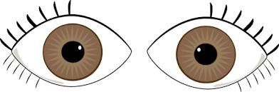 Flash Of Light In Eye Floaters U0026 Flashes In Eye Pinklea