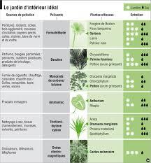 plante d駱olluante chambre vive les plantes dépolluantes pour une maison plus saine