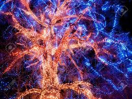 trail of lights at denver botanical gardens at chatfield stock