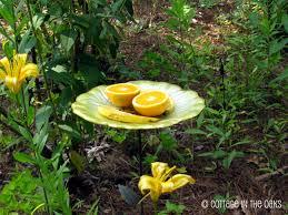 Spring Garden Ideas Spring Gardening Ideas U2026 U2026 Cottage In The Oaks