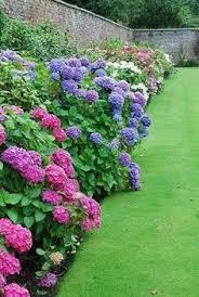 heaven u0027s walk grainsacks and florals the garden patio