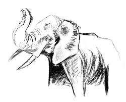 elephant fast sketch 4 by wiorkaeg on deviantart