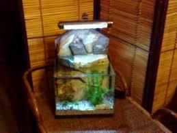 aquarium bureau mini aquarium cascade de bureau avec décor africain aquapotier