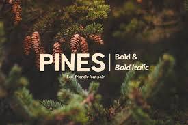 pines bold u0026 pines bold italic sans serif fonts creative market