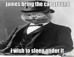 Gentleman Meme - gentleman cat by fartfart meme center
