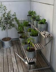 topfpflanzen balkon 29 ideen für balkongestaltung den balkon mit pflanzen verschönern