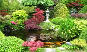 ponds designs with waterfall japanese garden with koi pond small