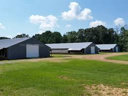 Pennsylvania Barns For Sale Poultry Farms For Sale Farmflip