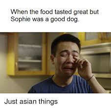 Asian Dog Meme - when the food tasted great but sophie was a good dog just asian