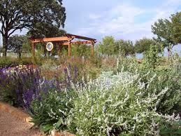 israel prayer garden denton county master gardener association