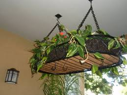black steel hanging pot with green plant placed on the white f