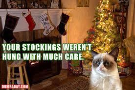 Cat Christmas Tree Meme - the best of grumpy cat s christmas smosh