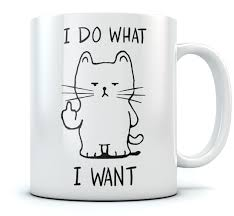Funny Coffee Mug by I Do What I Want Cat Funny Coffee Mug Cat Lovers Gift Ebay