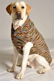 crochet sweater pattern for large dogs crochet and knit