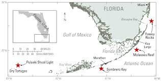 Marathon Florida Map by Weight Based Approach To Measuring Coral Growth Offers Valuable